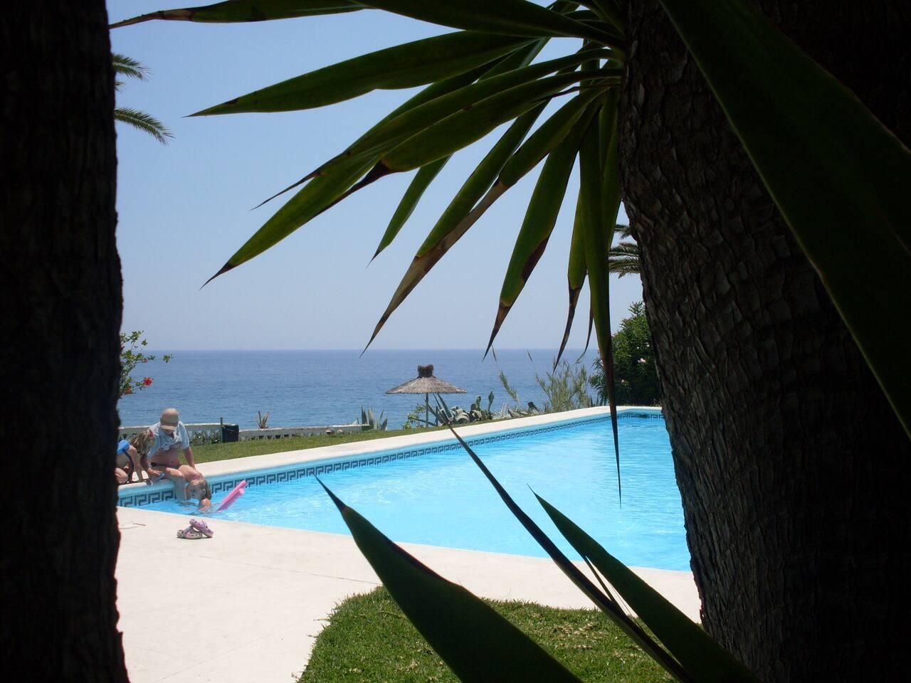 Views from our garden: Mediterranean pleasures