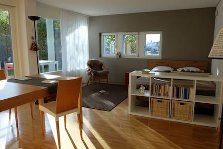 Studio sonnig mit Küche und Bad - Eschenbach - Apartamento