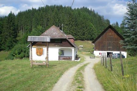 Reitbauernhof Luckyranch Ferienhaus - Ház