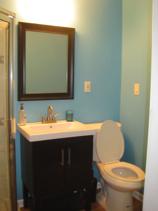 The newly renovated bathroom  near the guest bedroom.