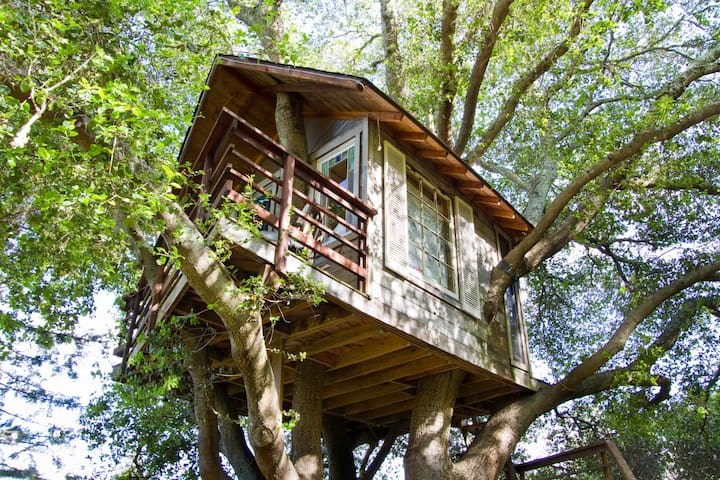 Treehouse Above San Francisco Bay! - Casa sull'albero