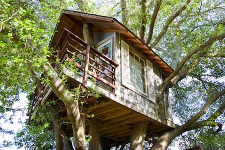 Treehouse Above San Francisco Bay! - Baumhaus