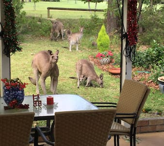 Sanctuary at Jervis Bay - Sanctuary Point - Bed & Breakfast