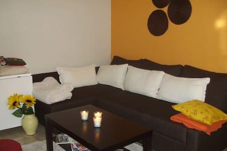 Appartement 50 m2 rdc centre ville - Appartement