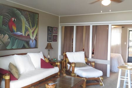 Number 4B is directly across the street from Magic Sands Beach it is the top floor of a two story 10 unit building, the parking is steps away. Sit on your lanai and take in the tropical breezes, watch the surf and volleyball action all day long!