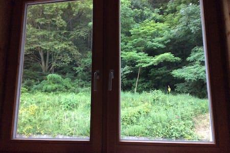 Zimmer im Forsthaus, Waldrandlage - Steinaweg - House