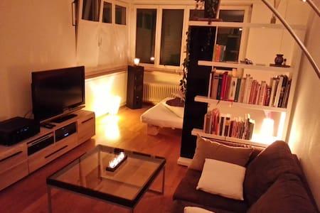 Cozy flat in Zurich Wollishofen - Zürich - Apartmen