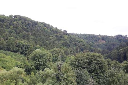 Kuckucksklause im Grünen Haus - Elbingerode (Harz)