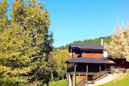 Beautiful log home. - Blockhütte