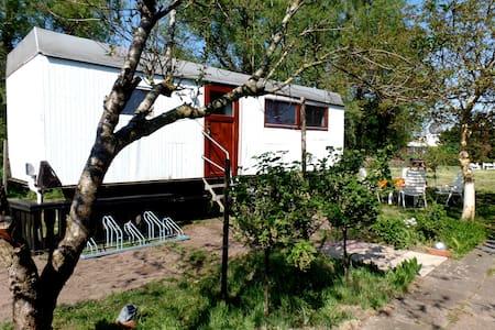 Ostseeurlaub im Wagen - Dierhagen - Altres