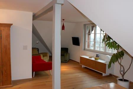 exklusive Wohnung mit Garten - Wohnung