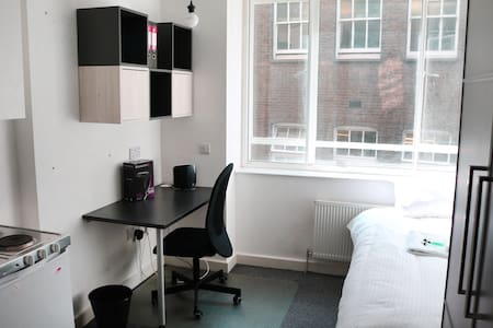 Studio Flat Farringdon Clerkenwell Holborn (101) - Apartment