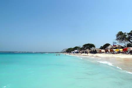 Beautiful Beach Cabana Eco-Hostel! - Bed & Breakfast