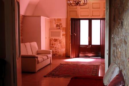 Elegant and spacious house - House
