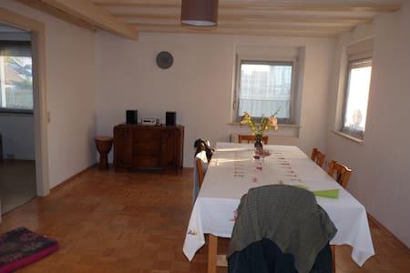 Appartement bucolique aux portes de Strasbourg - Huoneisto