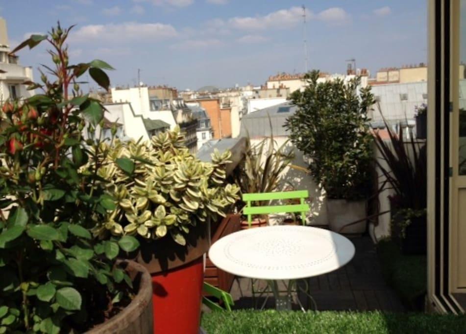 Little garden on the terrace