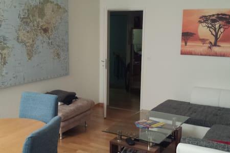 Gemütliches Zimmer 30min von Zürich - Appartamento