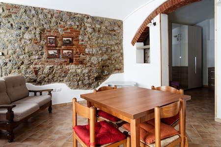 The apartment is furnished in rustic style and comprises two rooms with alcove, skilfully and recently restored with traditional Tuscan materials of high quality. It is on the ground floor of a building in the historic centre.