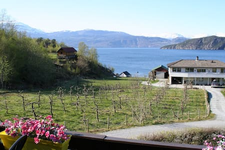 Room 2. Panorama view of the fjord!