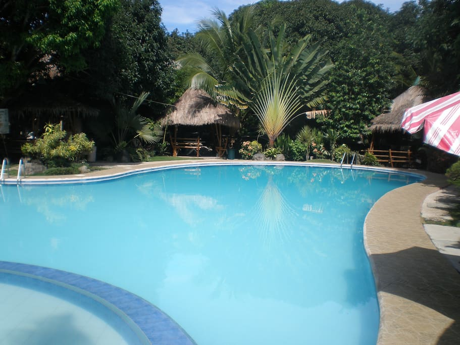 The pool, in front of the house