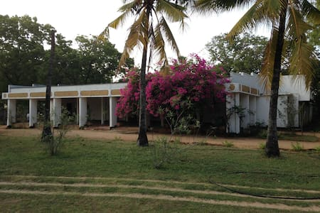 Trinco Beach Resort - Trincomalee - Cabin