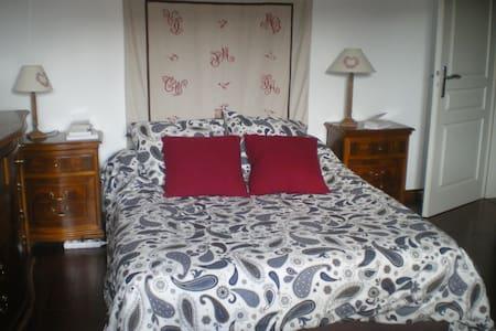 Jolie chambre en plein centre historique de Colmar - Appartement