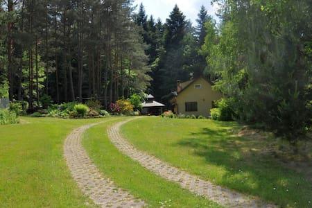 """Samotny dom pod lasem cudne zacisze """"nagoorce_eu"""" - Łączki - Apartment"""