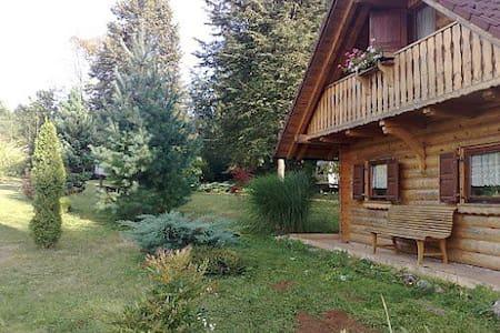 Relaxing cabin  - Kabin