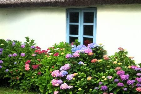 Hortensiagården - 9 soverpladser!