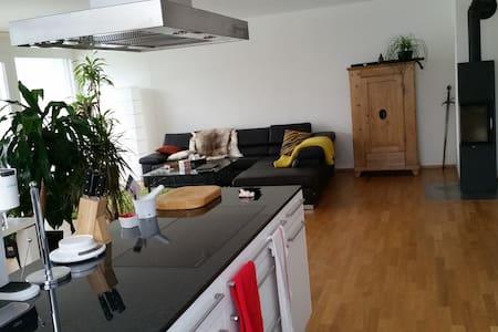 3 1/2 Zimmer Terrassenwonung - Frick - Apartment