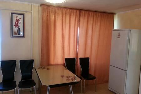 2-ком. комф квартира в самом центре - Appartement