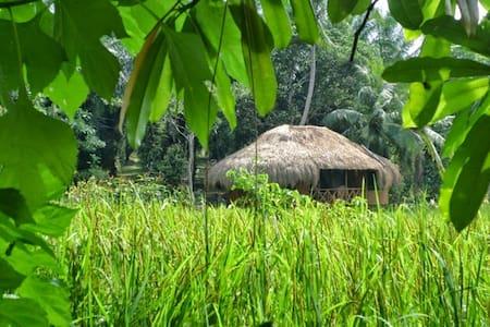Bienvenue dans notre Cabane HEENATI - Hikkaduwa - Bed & Breakfast