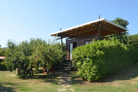 Cabin in an orchard - Nibbiano