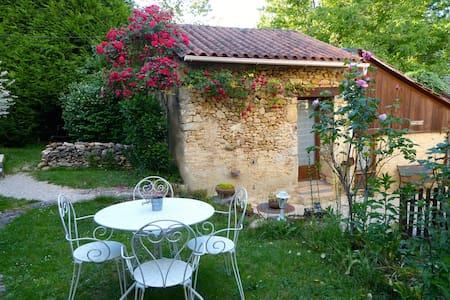 Chambre Safran, cuisine, terrasse