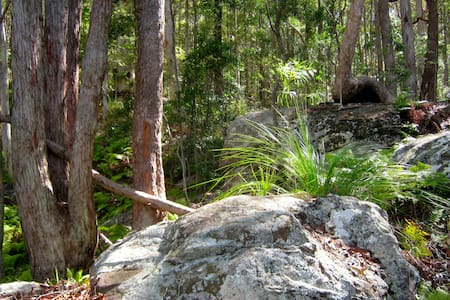 Sunshine Coast Sanctuary - Yandina Creek - Cabin