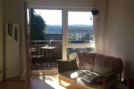 zentrale Wohnung mit tollem Ausblick - Marburg - Apartmen