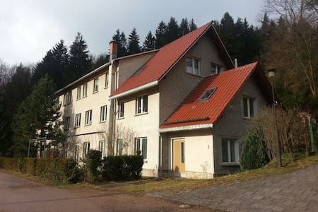 Tolles Appartement  in Alleinlage - Frankenhain - Apartamento