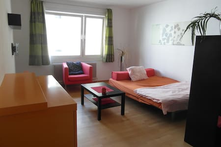 Huge private room near to central train station - Wien - Wohnung