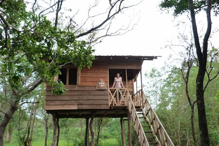 Treehouse Sigiri Queens Rest - Boomhut