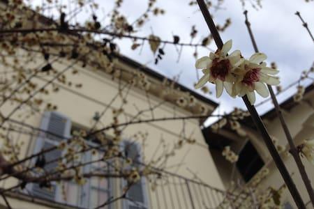 Historical house in Monferrato - Grazzano Badoglio