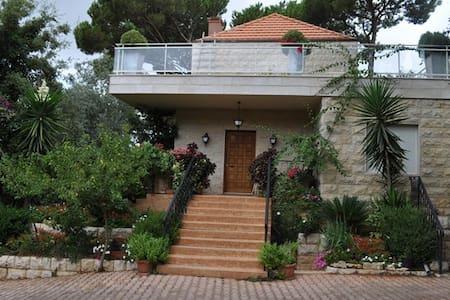 Private Villa Overlooking Beirut - Vila