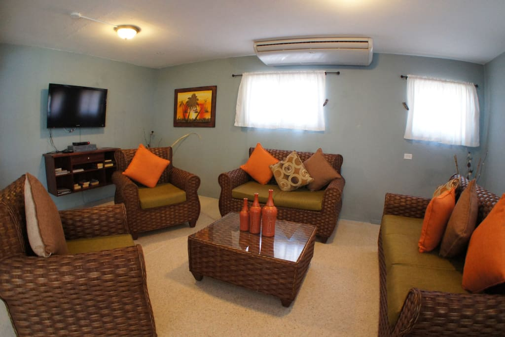 Large comfortably furnished living area