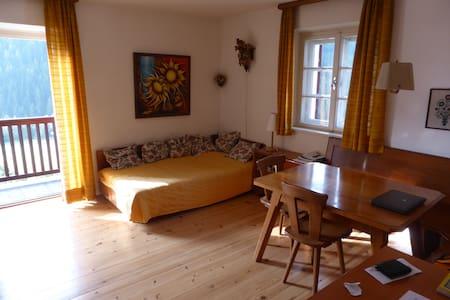 Alloggio panoramico nelle Dolomiti - Appartement