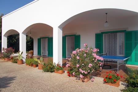 Villa ampia luminosa confortevole in Valle d'Itria - Cisternino