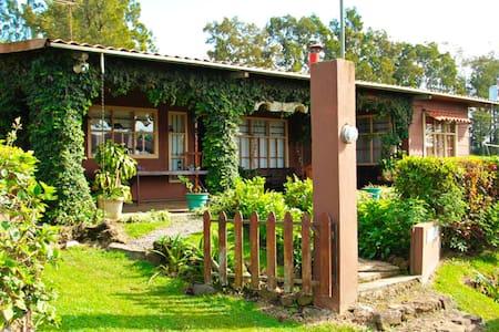Cabaña de Montaña Los Taitas con 2 Chimeneas! - Cipreses - House