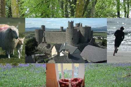 5 Bedrooms, 2 Bathrooms, Sleeps 10 - Harlech - Apartamento