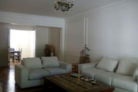 Spacious apartment in Bellas Artes - Santiago - Wohnung