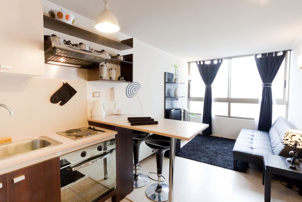 BEAUTIFUL APARTMENT!!! IN DOWNTOWN.