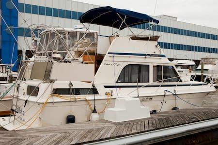 great manhattan view 2br yacht - Weehawken