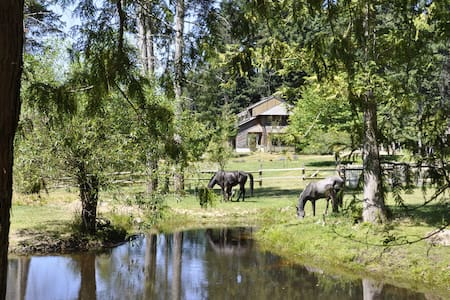 Farm in a paradise with horses - Van Anda - Hus